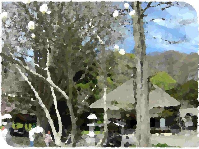ファイル 2004-1.jpg