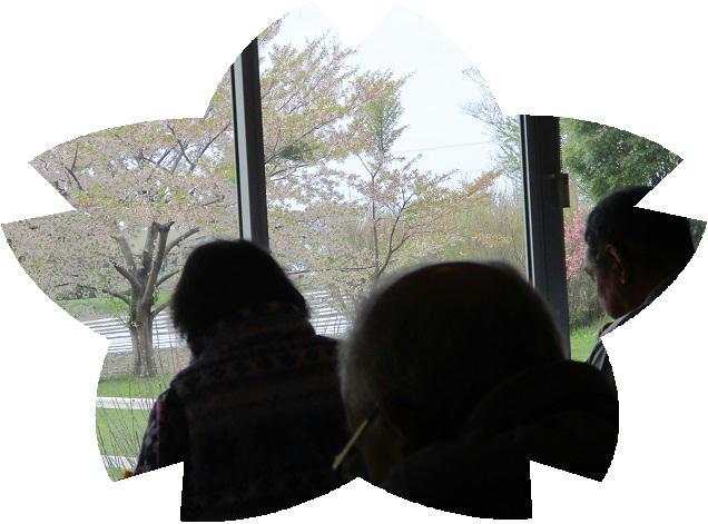 ファイル 2434-2.jpg