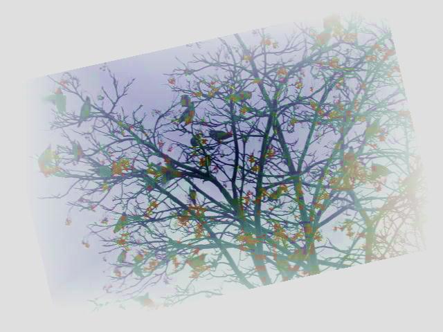ファイル 2496-2.jpg