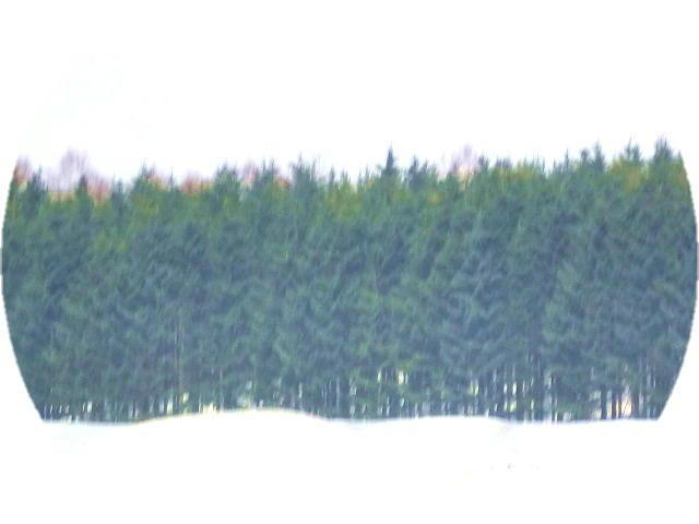 ファイル 2512-5.jpg