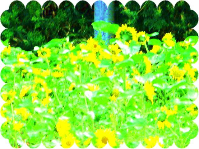 ファイル 2543-3.jpg