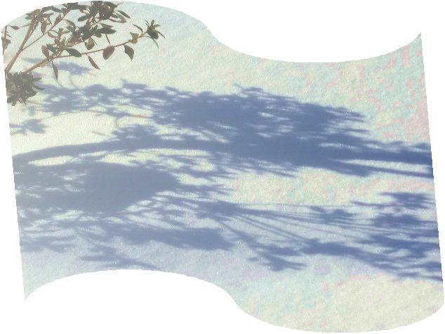 ファイル 2614-3.jpg